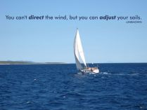 http://www.chelsey.co.nz/quotes/famous-quotes/you-cant-direct-the-wind-but-you-can-adjust-your-sails-unknown